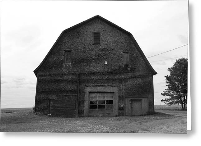 Maine Farms Greeting Cards - Timeless Barn Greeting Card by William Tasker
