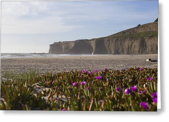 Half Moon Bay Greeting Cards - Timeless Escape Greeting Card by Jeremy Jensen