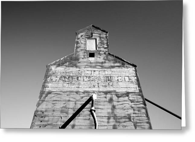 Tin Roof Greeting Card by Todd Klassy
