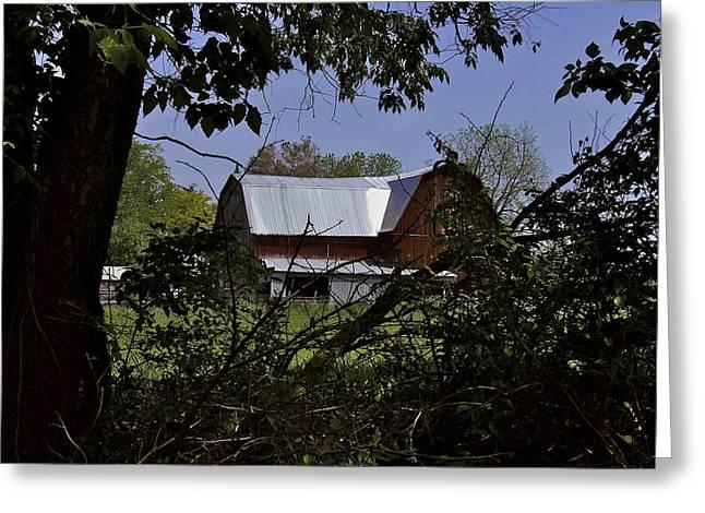 Tin Roofed Barn Greeting Card by Richard Gregurich