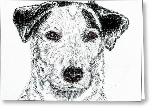 Tinker Sketch Greeting Card by Kirsten Sneath