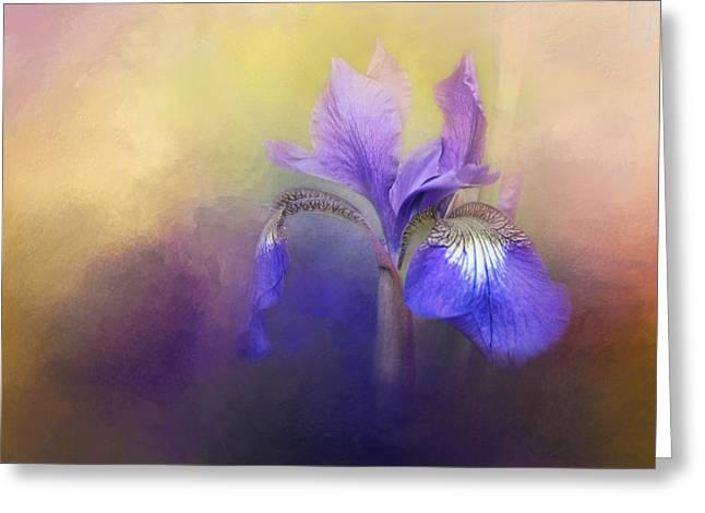 Tiny Iris Greeting Card by Jai Johnson