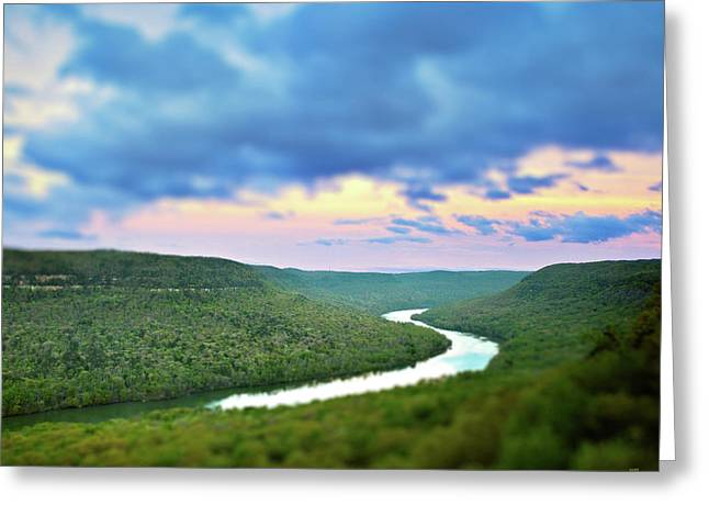 Tennessee River Greeting Cards - Tiny Snooper Greeting Card by Steven Llorca