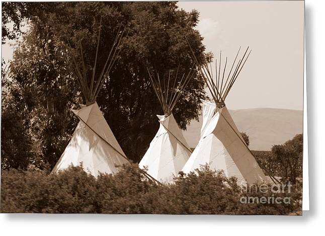 Tipis Greeting Cards - Tipis in Toppenish Greeting Card by Carol Groenen