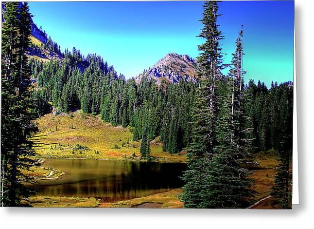 Chinook Greeting Cards - Tipsoo Lake on Chinook Pass Washington Greeting Card by David Patterson