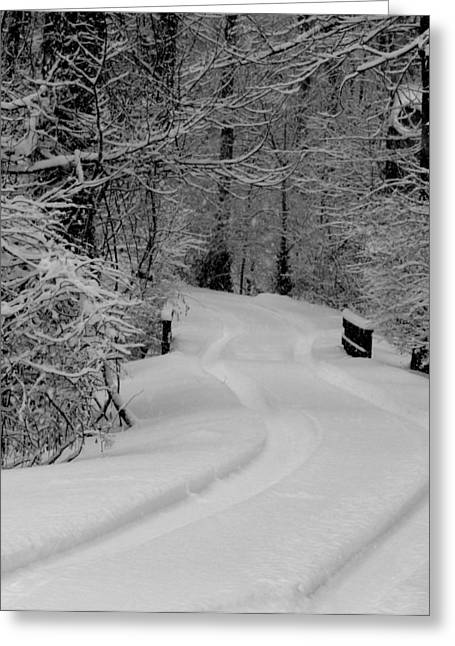 Indiana Winters Digital Art Greeting Cards - Tire Tracks Greeting Card by Ed Smith