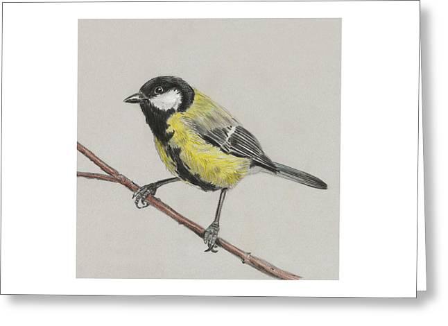 Tit Bird Greeting Card by Masha Batkova
