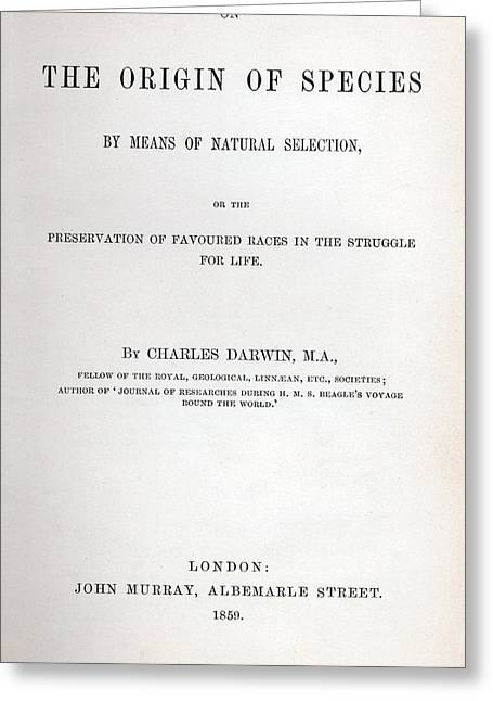 Watershed Greeting Cards - Title Page of The Origin of Species by Charles Darwin Greeting Card by Charles Darwin