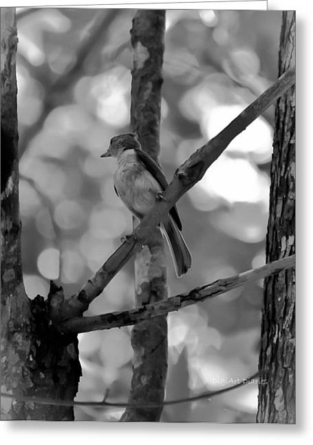 Daydream Greeting Cards - Titmouse Daydream Greeting Card by DigiArt Diaries by Vicky B Fuller