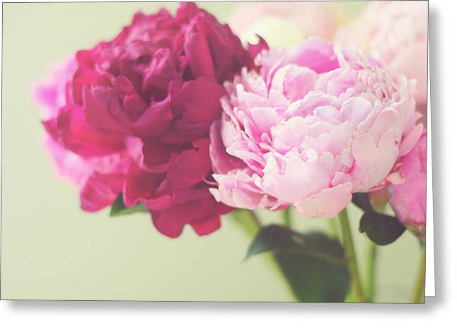 Macro Flower Photography Greeting Cards - To Have And To Hold Greeting Card by Amy Tyler
