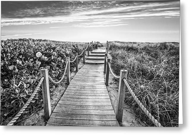Sanddunes Greeting Cards - To The Beach in Black and White Greeting Card by Debra and Dave Vanderlaan