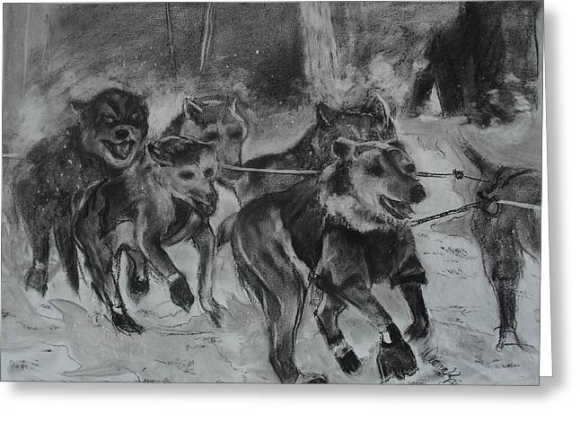 Husky Drawings Greeting Cards - To the Finish Greeting Card by Diana Kaye Obe