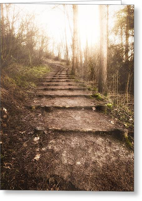 Wooden Stairs Greeting Cards - To The Light Greeting Card by Wim Lanclus