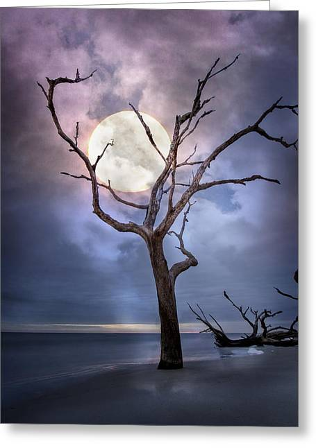 Moonshine On The Beach Greeting Cards - To The Moon Greeting Card by Debra and Dave Vanderlaan