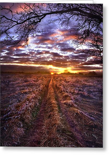 To The Place I Belong Greeting Card by Phil Koch