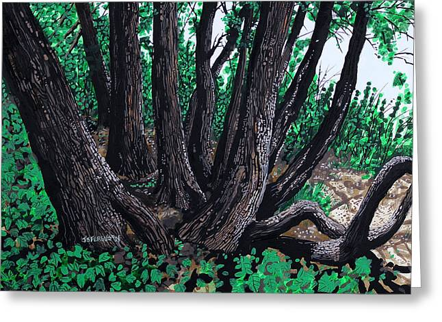 Tree Roots Paintings Greeting Cards - To the Sea Greeting Card by J S  Ferguson