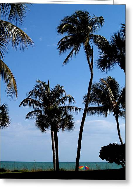 Garden Scene Photographs Greeting Cards - To the Sea Greeting Card by Richard Mansfield