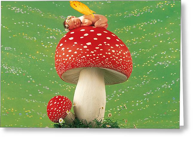 Toadstool Fairy Greeting Card by Anne Geddes