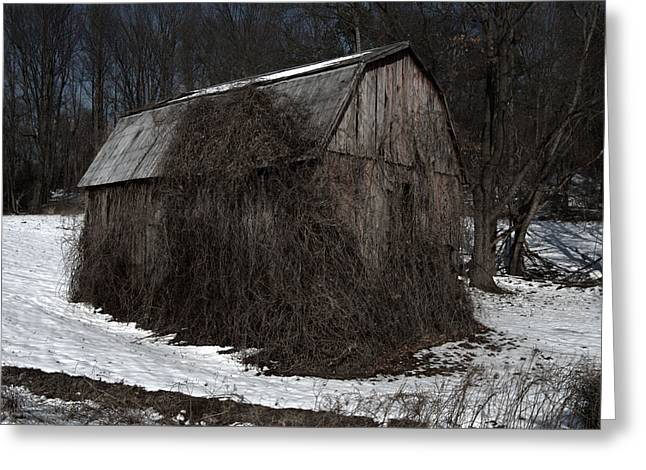 Tobacco Barns Greeting Cards - Tobacco Barn Charles County Maryland Greeting Card by Wayne Higgs