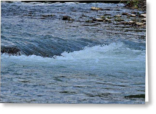 Canoe Greeting Cards - Todays Art 927 Greeting Card by Lawrence Hess