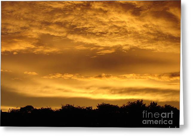 Toffee Greeting Cards - Toffee sunset 3 Greeting Card by Carol Lynch