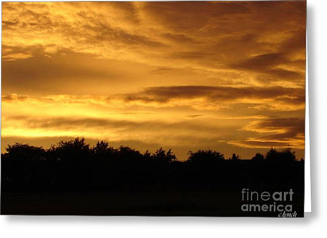 Toffee Greeting Cards - Toffee sunset Greeting Card by Carol Lynch