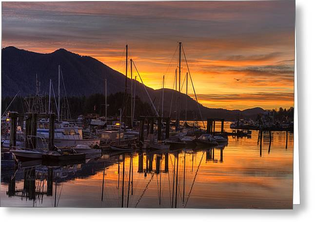 Trawler Greeting Cards - Tofino Docks Sunrise - A Tribute Greeting Card by Mark Kiver