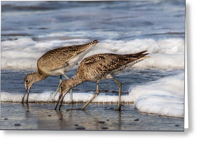 Ventura California Greeting Cards - Together Greeting Card by Danny Goen