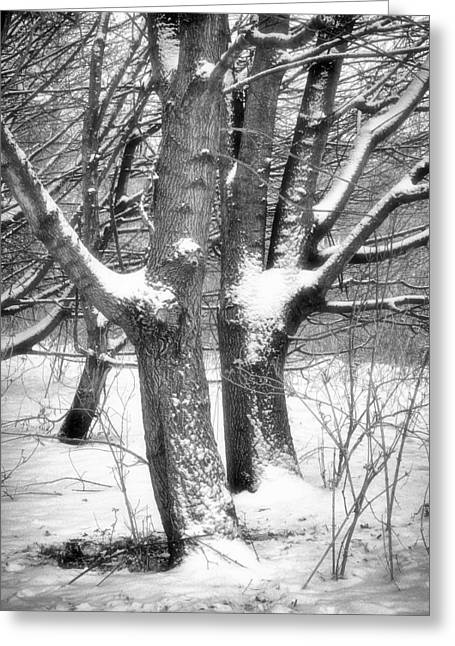Together Greeting Card by Wim Lanclus