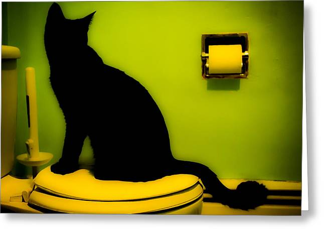 Photography Greeting Cards - Toilet Cat Greeting Card by Heather Pugh