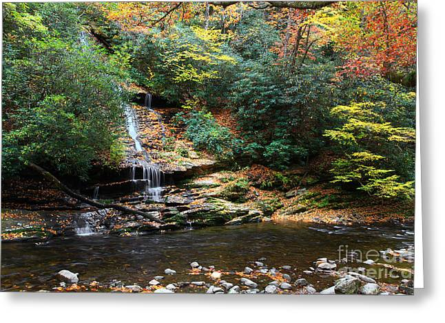 Water Flowing Greeting Cards - Tom Branch Falls in NC Greeting Card by Jill Lang
