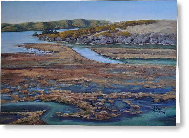 Sonoma County Pastels Greeting Cards - Tomales Bay Tangents Greeting Card by Debbie Harding
