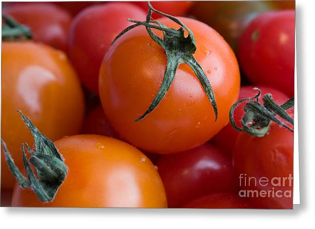 Tomatoes  Greeting Card by A New Focus Photography