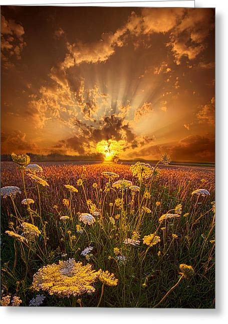 Green Leafs Greeting Cards - Tomorrow Is Just One Of Yesterdays Dreams Greeting Card by Phil Koch