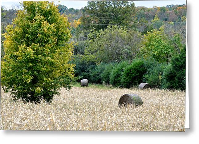 Tennessee Hay Bales Greeting Cards - Tomorrow Never Knows Greeting Card by Jan Amiss Photography
