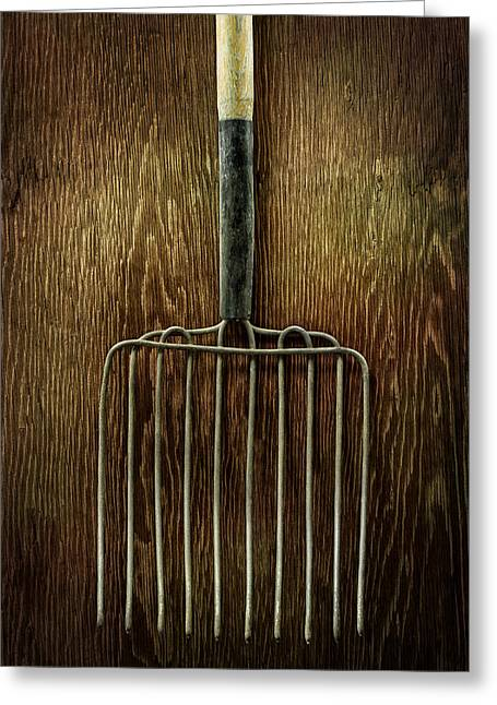 Compost Greeting Cards - Tools On Wood 21 Greeting Card by Yo Pedro