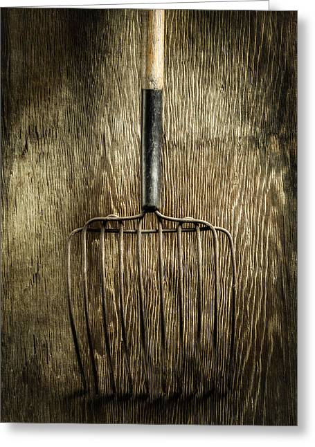 Compost Greeting Cards - Tools On Wood 25 Greeting Card by Yo Pedro