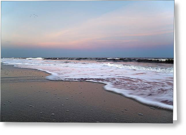 Topsail Dome-esticated Evening Greeting Card by Betsy C Knapp