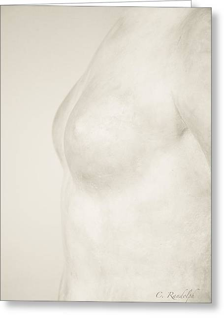 Cheri Randolph Greeting Cards - Torso Suggested Greeting Card by Cheri Randolph