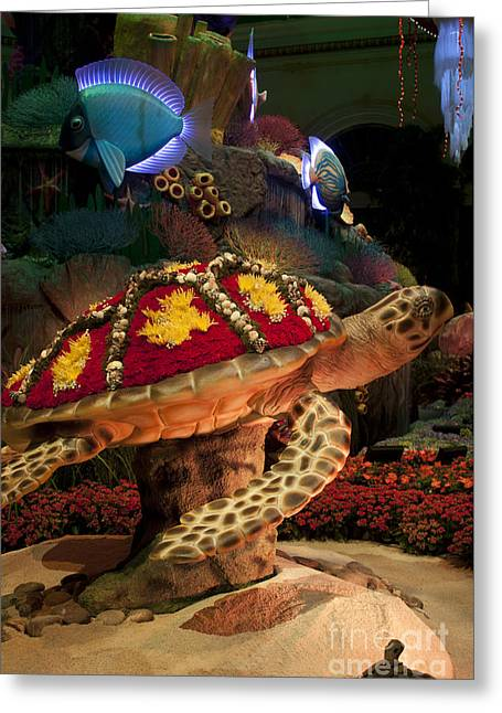 Original Photographs Greeting Cards - Tortoise in the Garden Greeting Card by Ivete Basso Photography