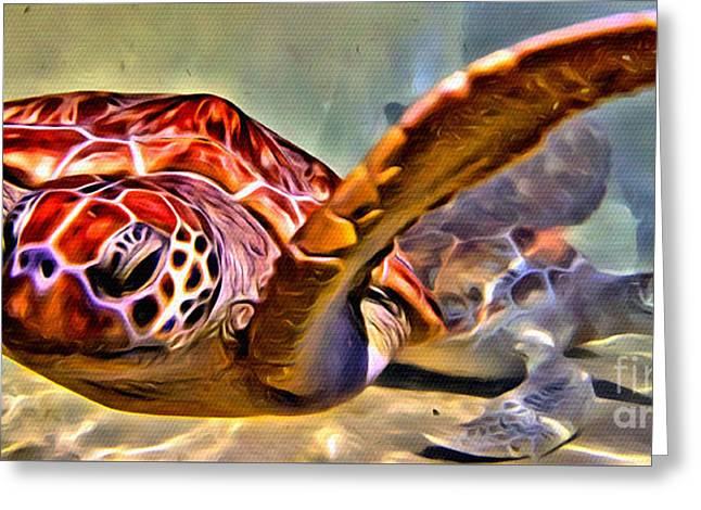 Tortuga Swim Greeting Card by Carey Chen