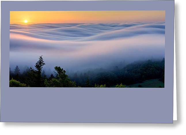 Marin County Greeting Cards - Touch of Gentleness Greeting Card by Dan Shehan