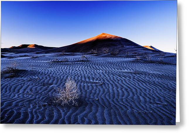 Touch Of Light At Bruneau Dunes State Park In Idaho Greeting Card by Vishwanath Bhat
