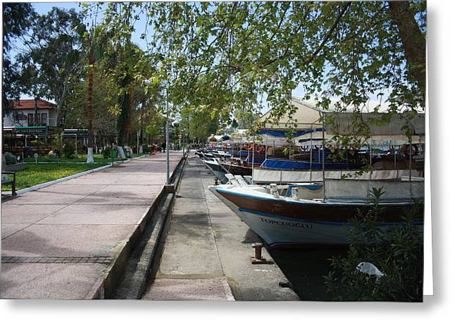Morass Greeting Cards - Tour Boats Lining Dalyan River Greeting Card by Tracey Harrington-Simpson