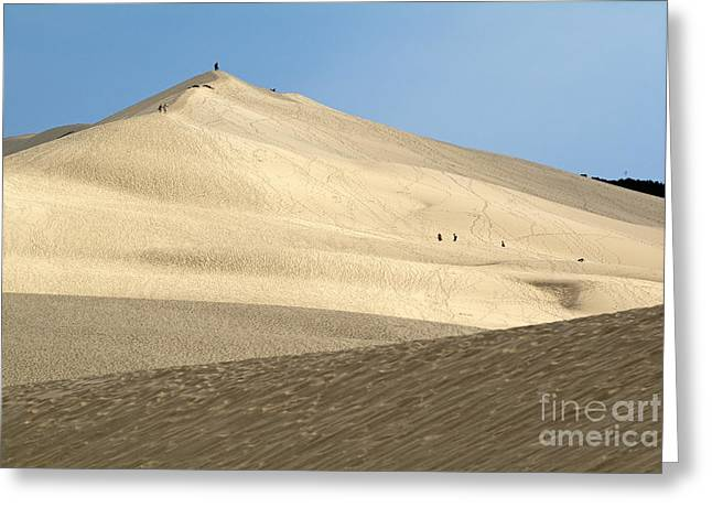 Great Dunes Greeting Cards - Tourists walking over the Great Dune of Pyla Greeting Card by Sami Sarkis
