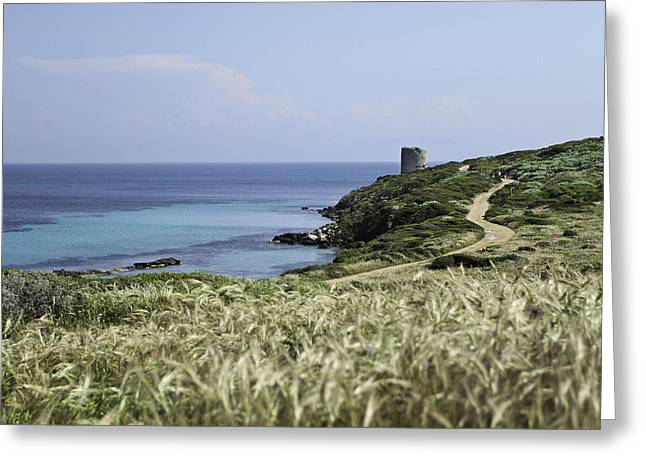 Mediterranean Landscape Pyrography Greeting Cards - Tower on the coast Greeting Card by Enrico Crobu