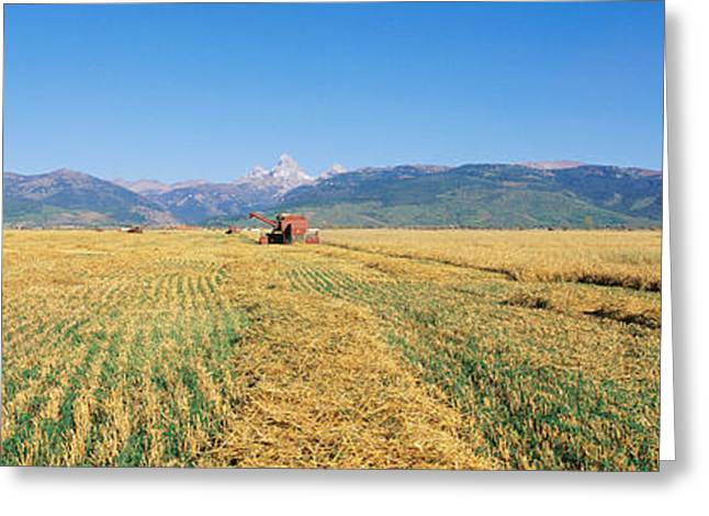 Mow Greeting Cards - Tractor Mowing Fields Greeting Card by Panoramic Images