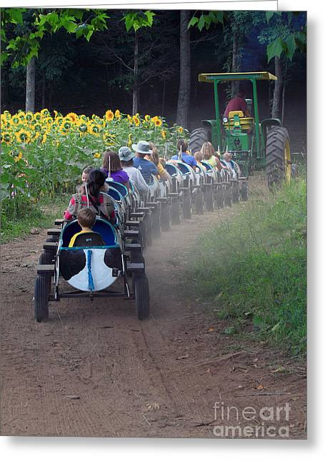 Buttonwood Farm Greeting Cards - Tractor Ride Greeting Card by Jim Beckwith