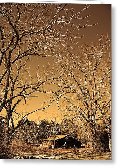 Tractor Shed II Greeting Card by Patricia Motley