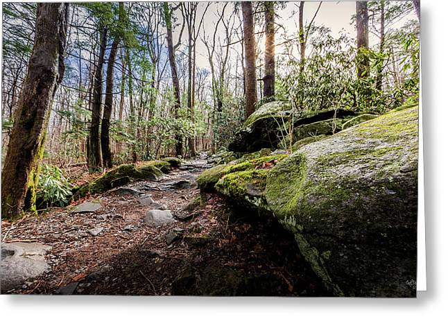 Trail To Rainbow Falls Greeting Card by Everet Regal